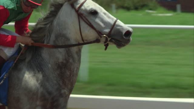 vídeos y material grabado en eventos de stock de 1980s cu pov horse race - galopar
