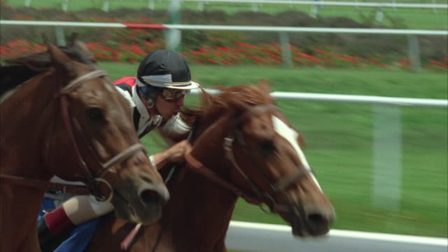 1980s cu pov horse race - horse racing stock videos & royalty-free footage
