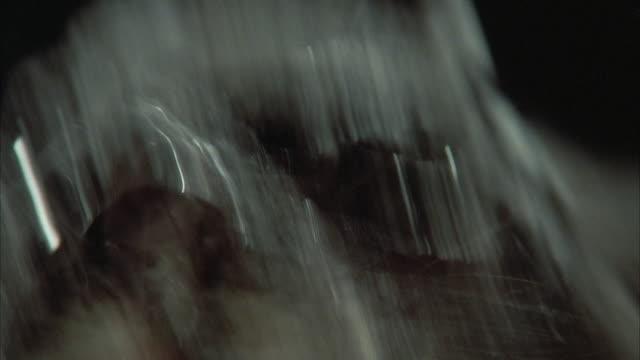 1980s ecu rat attacking camera - evil stock videos & royalty-free footage
