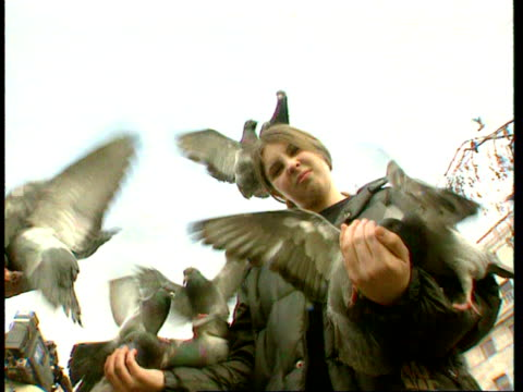 vídeos de stock e filmes b-roll de 1990s pigeons/ pigeons on woman in trafalgar square/ girl covered with with pigeons/ man talking to camera in front of pigeon food truck/ pigeons on... - escrita ocidental