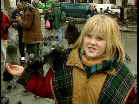 1990s cu ms woman with pigeons on her in trafalgar square/ ms girl with pigeons on her/ cu pigeons/ ms zi man with pigeons/ london england/ audio - besichtigung stock-videos und b-roll-filmmaterial