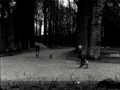 1jul1948 b/w montage princess beatrix irene and margriet on their bikes near the soestdijk palace filmed by prince bernhard / soestdijk utrecht... - utrecht stock videos & royalty-free footage