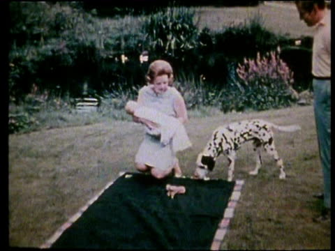 jun-1967 montage crown princess beatrix and prince claus proudly show off their newborn baby crown prince willem-alexander / netherlands - blanket stock videos & royalty-free footage