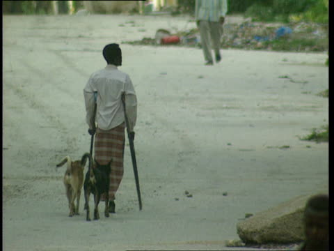 vídeos y material grabado en eventos de stock de oct-1998 man with one leg using crutches to make his way down dirt road, trailed by two dogs / mogadishu, benadir, somalia - víctima de accidente