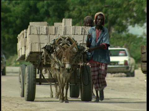 1oct1998 ws men walking along side donkey carts hauling cement blocks / mogadishu benadir somalia - arbeitstier stock-videos und b-roll-filmmaterial