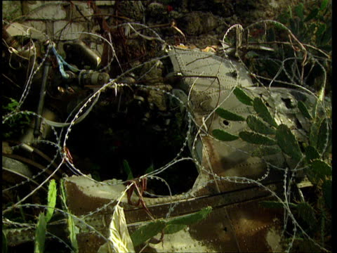 oct-1998 vegetation and coils of razor wire concealing abandoned armored vehicle / mogadishu, benadir, somalia - veicolo militare terrestre video stock e b–roll