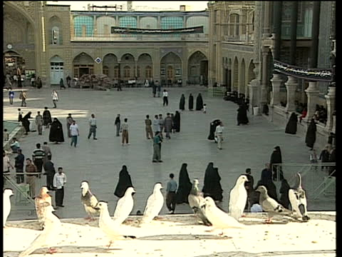 1st may 2000 ws ha pigeons and pilgrims in courtyard of saint massoumeh shrine / qum, iran - mittelgroße tiergruppe stock-videos und b-roll-filmmaterial