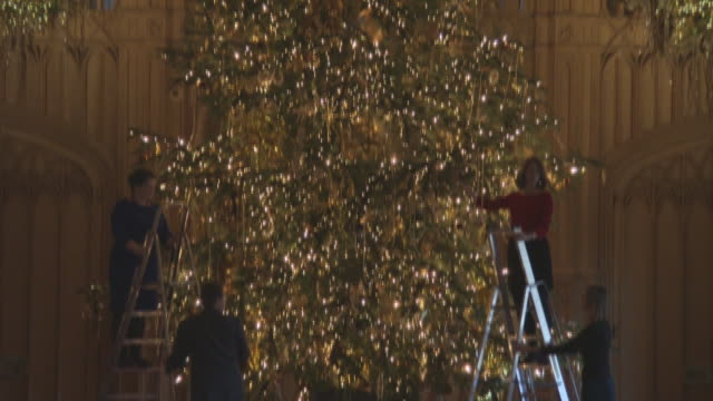 a 20ft nordmann fir tree from windsor great park is decorated in the st george's hall at windsor castle on november 23 2017 in windsor england - königshaus stock-videos und b-roll-filmmaterial