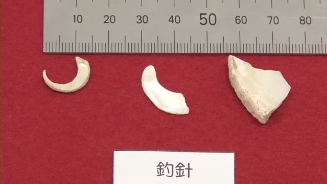 A 23000yearold fishhook considered one of the earliest in the world has been excavated in Japan's Okinawa Prefecture local researchers said on Sept...
