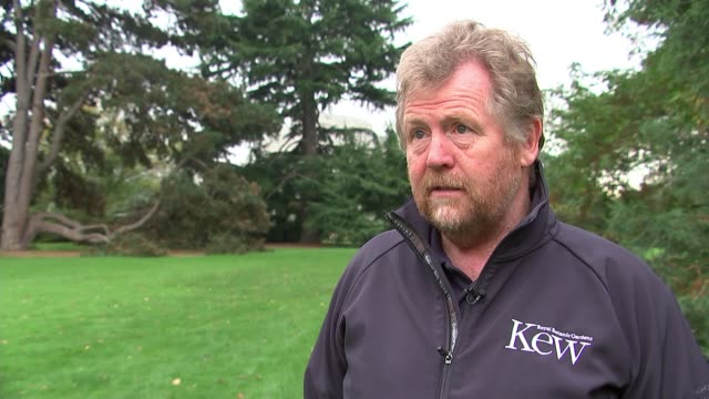Impact at Kew Gardens ENGLAND London Richmond Royal Botanic Gardens EXT Tony Kirkham interview SOT