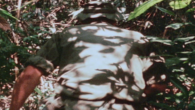 montage 327th infantry regiment soldiers hacking through jungle with machetes hiking through with m60 and m16 machine guns ammunition belts across... - bandolier stock videos & royalty-free footage
