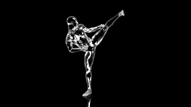 3d Karateka kick