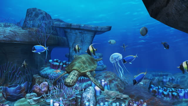 3d - undersea stock videos & royalty-free footage
