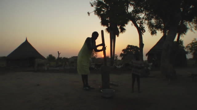 vídeos de stock e filmes b-roll de 3rd march 2009 ws woman pounding sorghum to later make flour silhouetted at sunset / duk payuel jonglei sudan - sorgo família da relva