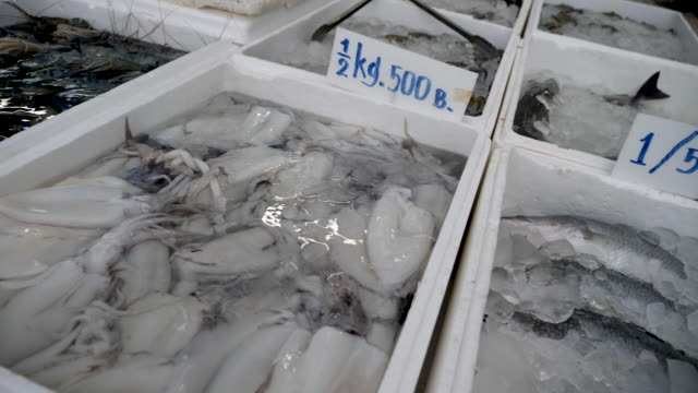 4k 10bit freshly caught seafood on display for sale at the local fish market in koh samet island thailand - crustacean stock videos & royalty-free footage