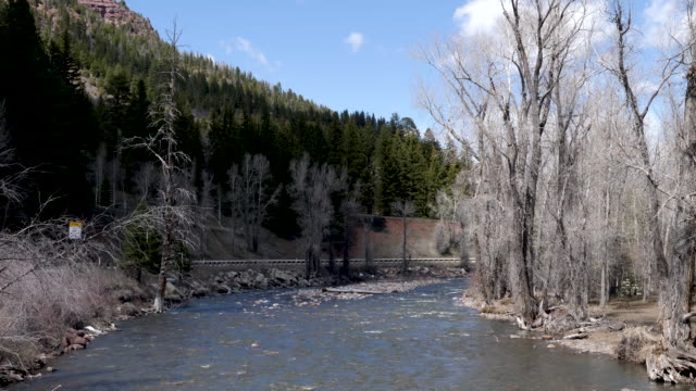 4k 10bit gunnison river scene near gunnison colorado. shot in spring time when the snow and ice from winter is melting - gunnison stock videos & royalty-free footage