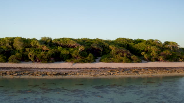 4k aerial fly-over of Heron Island