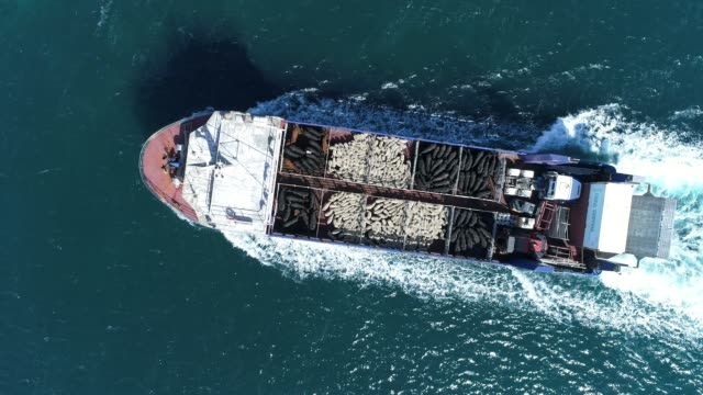 4k aerial of ferry at sea, carrying sheep and cattle - ship stock videos & royalty-free footage