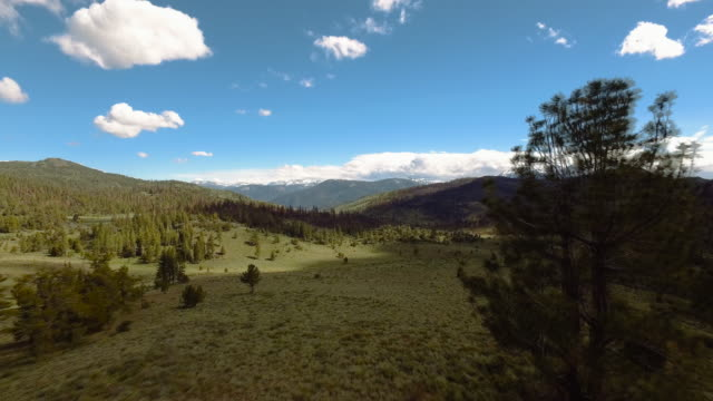 4k Aerial of Sierra Nevada Mountain Range. Passing very close to trees
