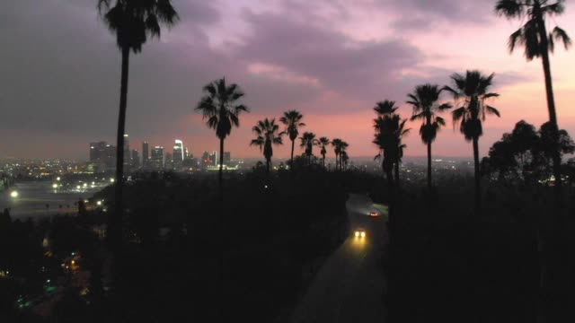 4k aerial video - palm trees in the sunset la - california sunset stock videos & royalty-free footage