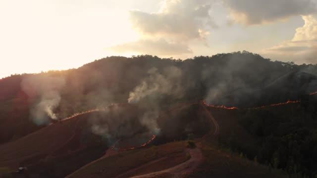 vídeos de stock, filmes e b-roll de 4 k aérea vista e dolly shot de floresta fogo em vez do sol. - queimado