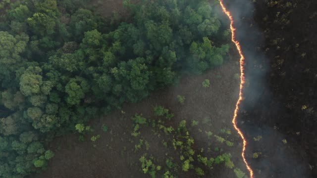 vídeos de stock e filmes b-roll de 4k aerial view and lockdown of forest fire. - inferno fogo
