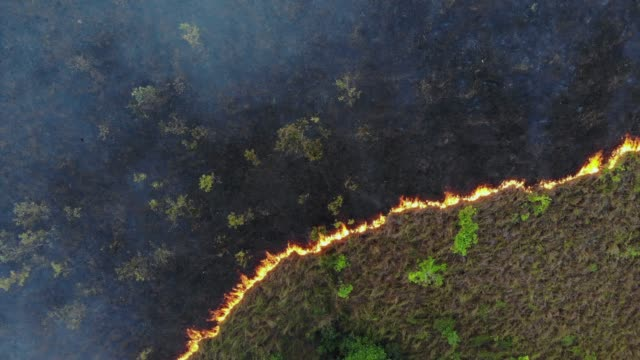4k aerial view and zoom out of forest fire.