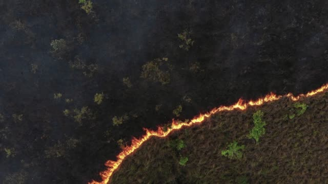 4k aerial view lockdown of forest fire. - forest fire stock videos & royalty-free footage