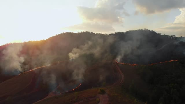 4k aerial view of forest fire in sunset time. - burning stock videos & royalty-free footage