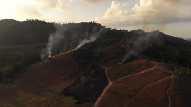 4k aerial view with lockdown of forest fire in sunset time.