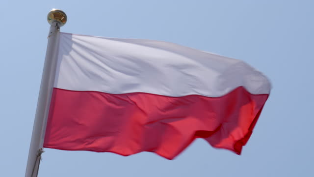 4k close up slow motion of poland national flag flying proudly in the wind on a warm beautiful bright summer day. - fahnenstange stock-videos und b-roll-filmmaterial