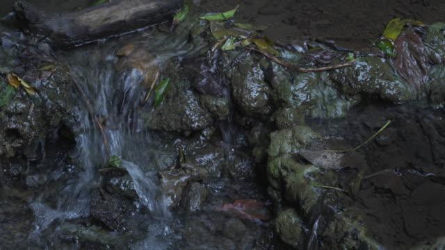 4k, bis zu in der Nähe fließt das Wasser in der Natur.