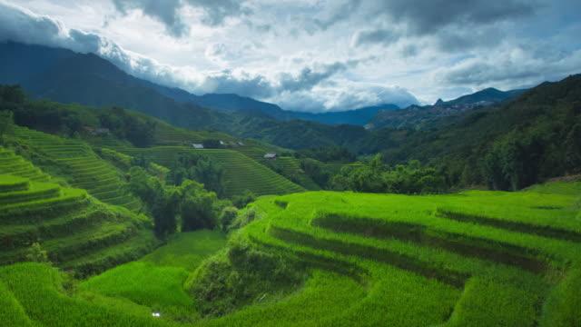 vidéos et rushes de 4 dolly k abattu, time-lapse de rizière étape et nuageux dans sapa vietnam. - rizière