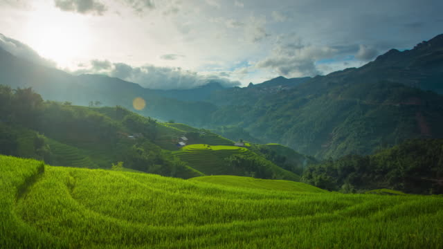 4k dolly shot, time-lapse of step rice paddy at sunset in sapa vietnam. - sa pa stock videos and b-roll footage