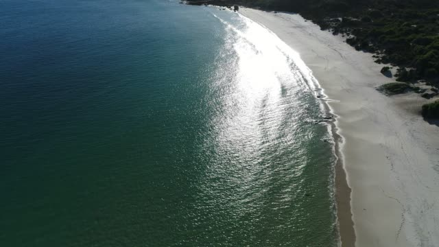 4k drone aerial pov over silver water and golden beach
