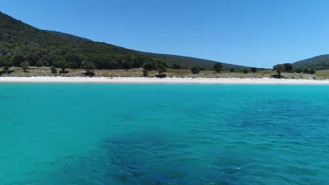 4k drone cove sea beach forest