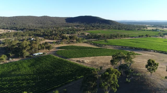 4k drone pov flight over vineyard, heathcote, australia - horizontal stock videos & royalty-free footage
