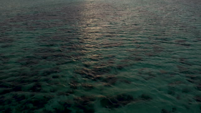 4k epic flight and tilt over coral reef at sunset - tilt stock videos and b-roll footage