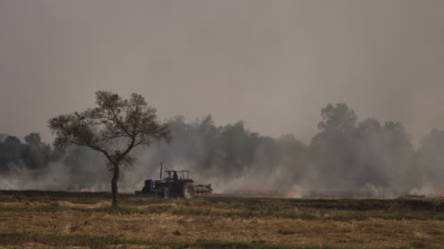 4k farmer slash and burn agriculture concept.