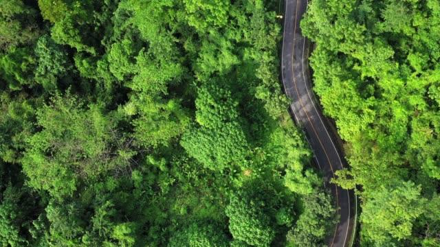vídeos y material grabado en eventos de stock de 4k imágenes de punto de vista aéreo o drone de la carretera local en el bosque. concepto de transporte y viaje. - top