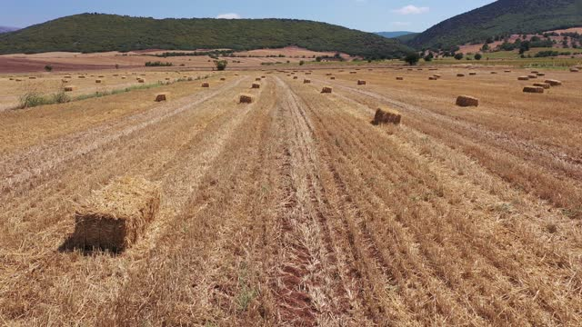 4k footage of hay bale with by drone - hay stock videos & royalty-free footage