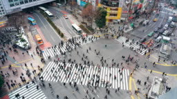 4k footage scene of pedestrians and car crowd undefined people walking overpass the street intersection cross-walk in Shibuya district Tokyo city, Japan. Japanese culture and shopping area concept