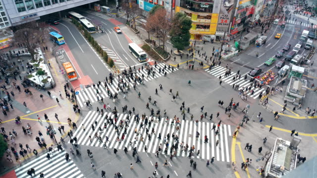 stockvideo's en b-roll-footage met 4k footage scène van voetgangers en auto menigte ongedefinieerde mensen lopen viaduct de straat kruising cross-walk in shibuya district tokyo stad, japan. japans cultuur-en winkelgebied concept - shibuya shibuya station