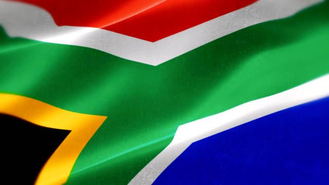 4k Highly Detailed Emblem of South Africa