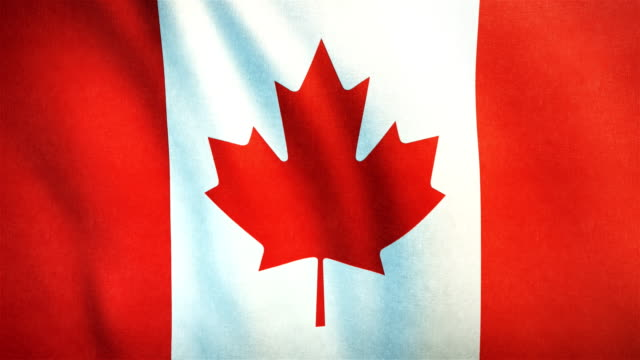 4k highly detailed flag of canada - loopable - bandiera del canada video stock e b–roll