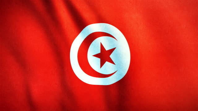 4k highly detailed flag of tunisia - loopable - dinar stock videos & royalty-free footage