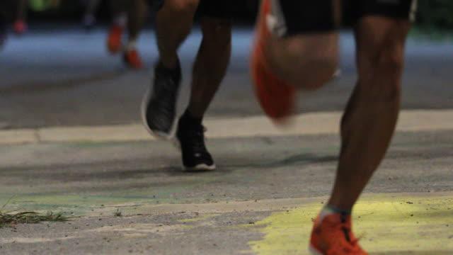 vídeos de stock e filmes b-roll de 4k jogging and runners legs. - parte do corpo animal