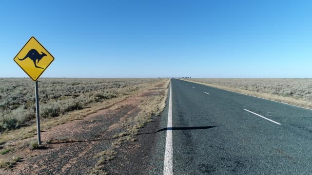 4k Kangaroo road sign next to Highway in Outback Australia