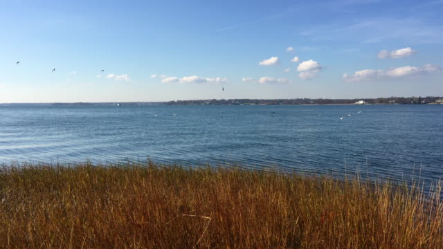 4k Long Island Sound, Calm HQ