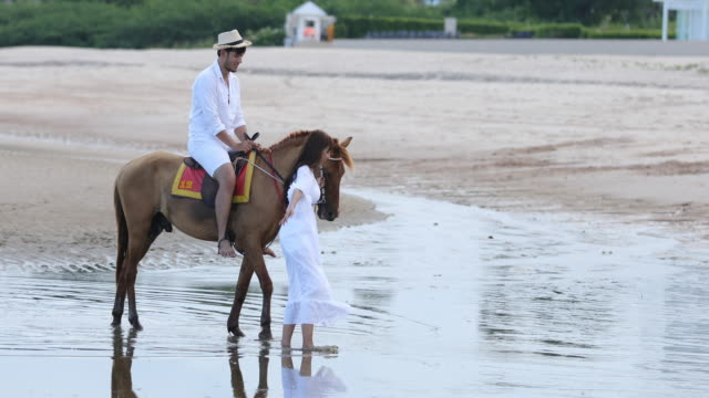4k of couples walkers enjoy the beach and happy retired couple on tropical vacation and young woman riding horse on the seashore - all horse riding stock videos & royalty-free footage